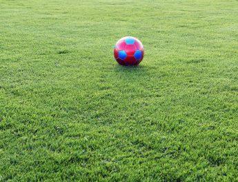 Es ist für viele der schönste Untergrund für Fußballer - der Rasen. Hier bei der Eröffnung in Leutesdorf.