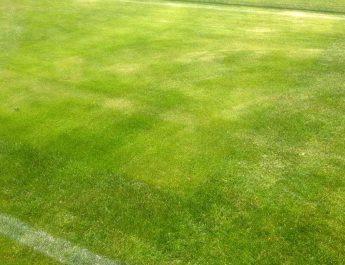 Es ist für viele der schönste Untergrund für Fußballer - der Rasen. So auch beim Bitburger-Kreispokal in Hilgert.