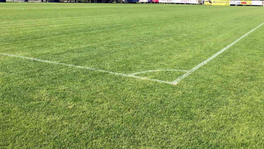 Es ist für viele der schönste Untergrund für Fußballer - der Rasen.