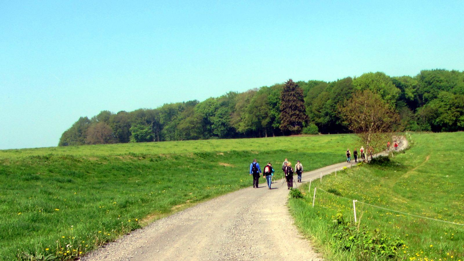 Die Wanderer der TSG Irlich waren auch wieder am 1. Mai unterwegs.