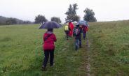Auch der Regen konnte die Wanderer der TSG Irlich nicht von der traditionellen Herbstwanderung abhalten.