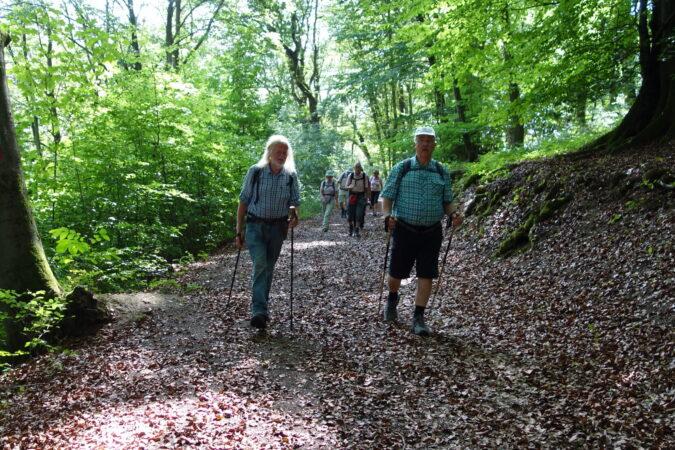 Auf dem Rheinsteig ging es durch Feld, Wald und Wiesen.