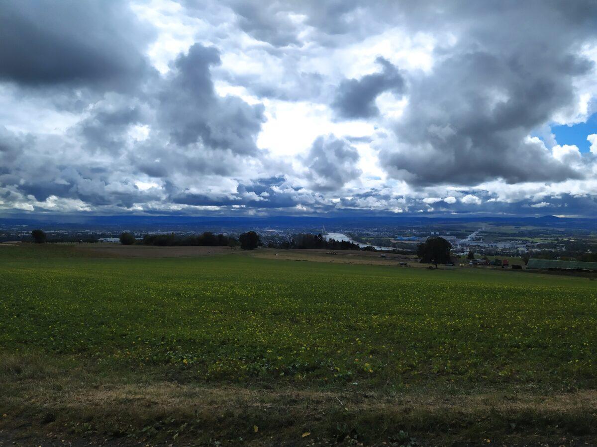 Wolkige Aussicht über das Neuwieder Becken